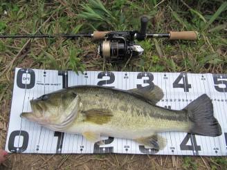 5.8 夷隅の野池3 47cm